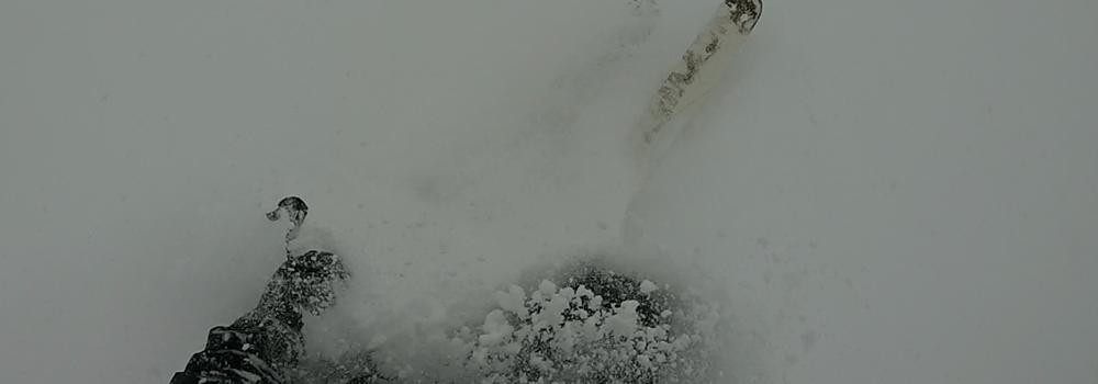 Spring Pow at Snowbird