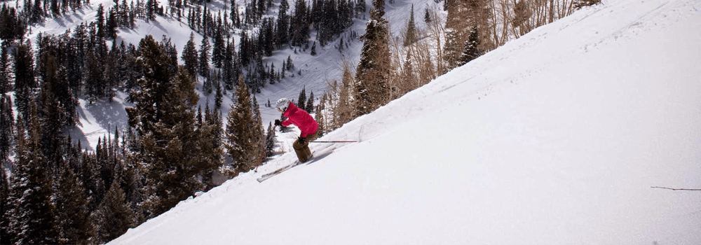 NEWS: The Largest Ski Resort in the U.S.