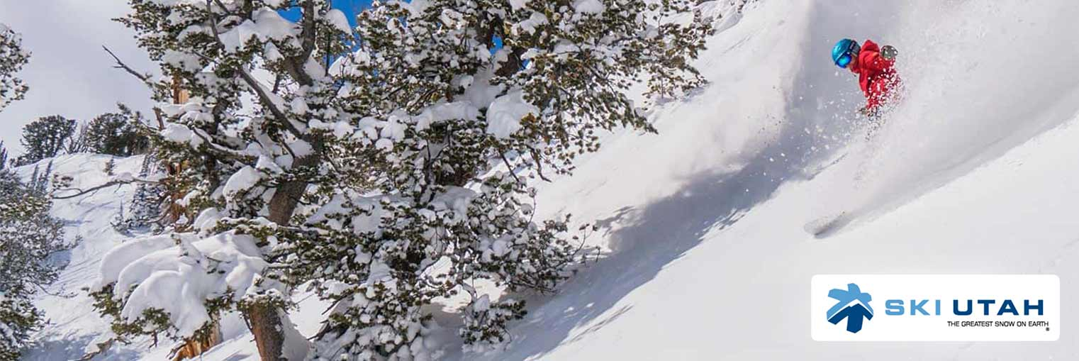Snow Report - Skier Getting Covered in the Greatest Snow on Earth